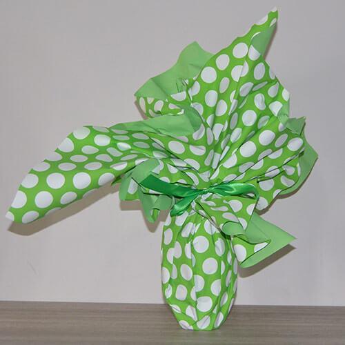 Cuovo di pasqua - confezione pois verde